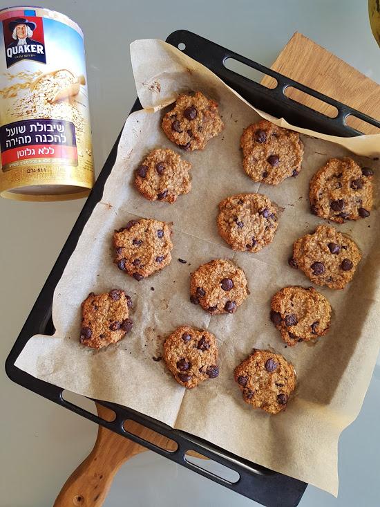 עוגיות שיבולת שועל. צילום: דביר בר